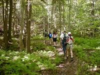 Name:  Hiking.jpg Views: 61 Size:  33.0 KB