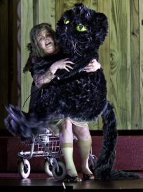Name:  big cat 2.jpg Views: 127 Size:  13.4 KB