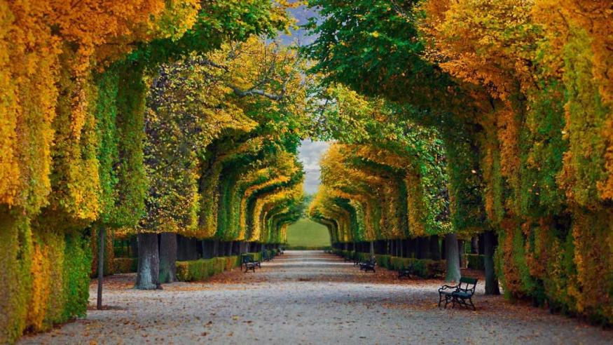 Name:  Schönbrunn-Palace-gardens-in-Vienna-Austria-20161023.jpg